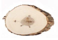 Fetta di legno Immagine Stock