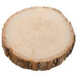 Fetta di legno del ceppo immagini stock