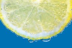 Fetta di limone Fotografia Stock