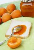 Fetta di pane bianco con l'ostruzione dell'albicocca Fotografie Stock Libere da Diritti