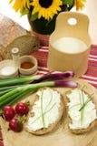 Fetta di pane sparsa con il formaggio delle pecore Fotografia Stock Libera da Diritti