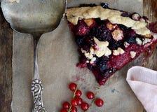 Fetta di torta della frutta Fotografia Stock