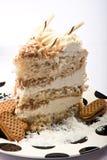 Fetta di torta di noce di cocco Immagini Stock