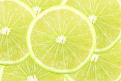 Fetta fresca degli agrumi della calce del limone Fotografie Stock