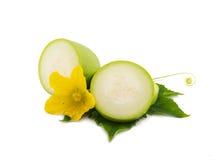 Fetta fresca dello zucchini del midollo con la foglia ed il fiore isolati Immagini Stock Libere da Diritti