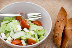 Fetta salad portion and slices of whole wheat bread Royalty Free Stock Photos