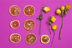 Fetta secca del limone e dell'arancia con la rosa di giallo su un fondo di Borgogna come opera d'arte che può essere usata per la Fotografia Stock