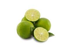 Fetta verde fresca del limone su fondo bianco Fotografia Stock