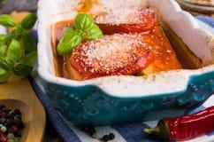 Fette al forno di verdure Fotografie Stock