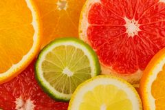Fette arancio Immagine Stock Libera da Diritti