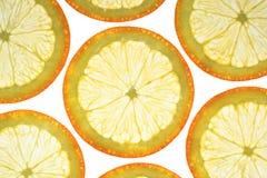 Fette arancioni immagine stock