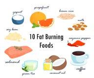 Fette brennende fette Illustration der Spitze zehn Nahrungsmittel Lizenzfreie Stockfotos