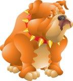 Fette Bulldogge Lizenzfreies Stockbild