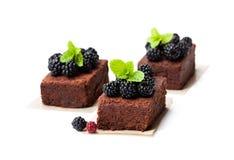 Fette casalinghe del brownie del cioccolato con le bacche isolate su briciolo fotografia stock