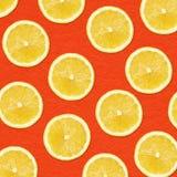 Fette del limone di giallo di fotografia del primo piano Immagini Stock
