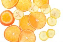 Fette del limone e dell'arancia, lampadina, vedere-sebbene, Fotografia Stock Libera da Diritti