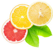 Fette del pompelmo, dell'arancia e del limone isolate sul backgr bianco Immagini Stock