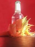 Fette del sashimi e bottiglia del tonico del japanesse Fotografie Stock Libere da Diritti