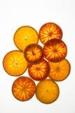 Fette dell'arancia sanguinella (vista superiore) fotografia stock