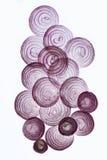 Fette della cipolla alla luce indiretta Fotografie Stock Libere da Diritti
