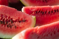 Fette di anguria fresca Immagini Stock Libere da Diritti