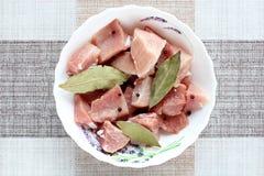 Fette di carne per la spezia di kebab fotografie stock