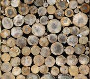 Fette di ceppi, una pila di legno immagini stock