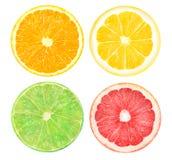 Fette di pompelmo arancio e rosa, di limetta e di limone Immagini Stock Libere da Diritti