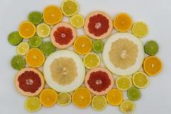 Fette di vari agrumi Fotografia Stock Libera da Diritti