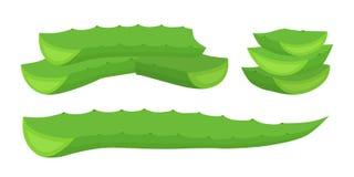Fette di vera dell'aloe, erba succulente organica Stile piano del fumetto Vettore Immagine Stock
