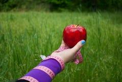 Fette Frauennahaufnahme der rechten Hand hält einen großen roten Apfel, den weißer blauer Schmetterling auf der Hand sitzt stockfotografie