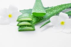 Fette fresche di vera dell'aloe con la foglia ed i fiori su fondo bianco Fotografie Stock