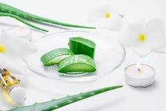 Fette fresche di vera dell'aloe con la foglia, i fiori, i candels e l'olio su wh Immagine Stock