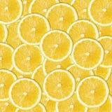 Fette gialle del limone Immagini Stock