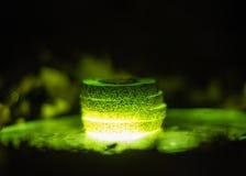 Fette illuminate del kiwi Immagini Stock