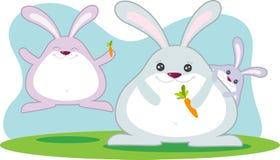 Fette Kaninchen-Familie Lizenzfreies Stockfoto