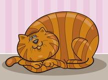Fette Katze Lizenzfreie Stockbilder