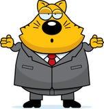 Fette Katze verwirrt Lizenzfreies Stockfoto