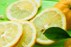 Fette mature gialle del limone con la foglia su fondo verde Fine in su immagini stock