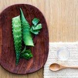 Fette organiche e luffa della foglia di vera dell'aloe per progettare idratante Fotografia Stock