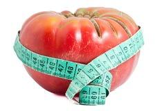 Fette rote Tomate Lizenzfreie Stockfotografie