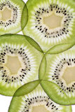 Fette trasparenti di kiwi Immagine Stock