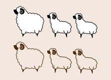Fette und kleine Schafe Lizenzfreie Stockfotos