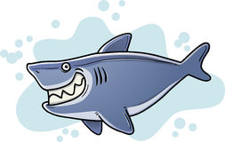 Fetter Haifisch Lizenzfreie Stockfotografie
