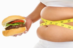 Fetter Magen Stockbild