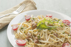 Fettuccine Alfredo with Ground Sausage Royalty Free Stock Photo
