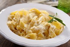 Fettuccine Alfredo with Parmesan cheese. Fettuccine Alfredo with white sauce and Parmesan Royalty Free Stock Photo