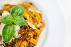 Fettuccine bolognese. Fettuccine pasta with bolognese sauce, sprinkled with shaved parmesan and decorated with basil stock image