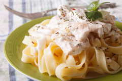 Fettuccine pasta with chicken and cream sauce close-up. Horizont. Fettuccine pasta with chicken and cream sauce close-up on a plate. Horizontal royalty free stock photography