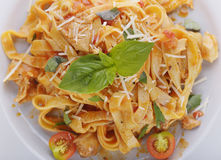 Fettuccine Pasta with Chicken Royalty Free Stock Photo